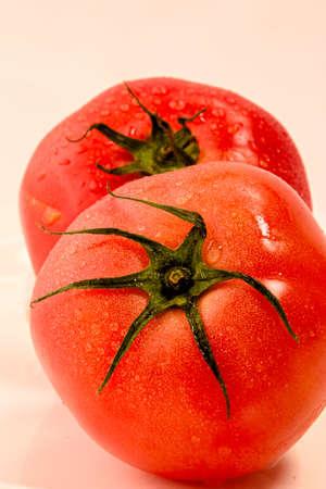 Reife Tomate Standard-Bild - 92850716