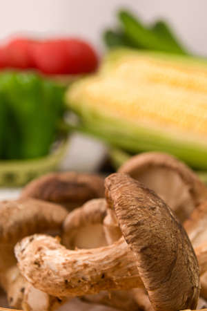 Closeup photo of mushroom from Hokkaido Standard-Bild - 109978753