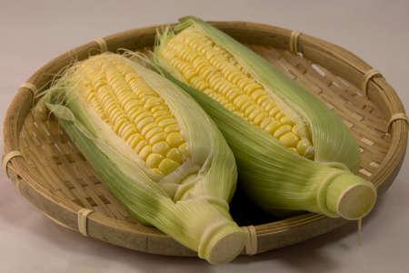 Closeup photo of Corn from Hokkaido Standard-Bild - 109977932