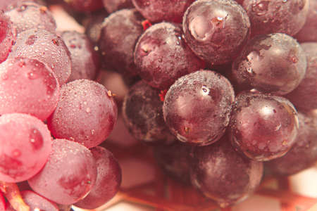 Closeup photo of Japanese grapes Standard-Bild - 109977879