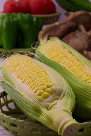 Closeup photo of Corn from Hokkaido Standard-Bild - 109977887