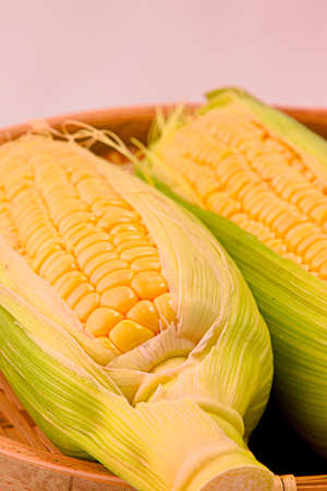 Closeup photo of Corn from Hokkaido Standard-Bild - 109977888