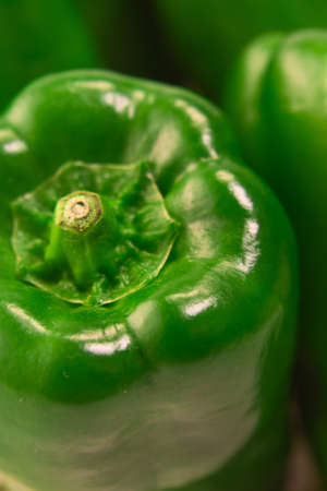Green Pepper Standard-Bild - 110116859