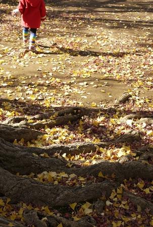 Girl running in autumn park