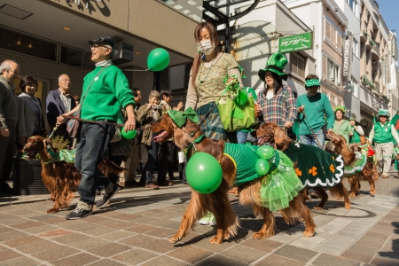 Yokohama, Japan - March 16, 2013  People and their dogs join the parade for St  Patrick