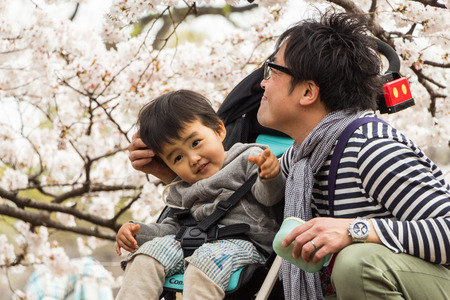Tokyo, Japan - March 23, 2013  Unidentified child and parent are seeing Sakura blossom in Shinjukugyoen park at Shinjuku, Tokyo, Japan