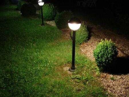 silent garden in the night photo