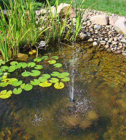 waterleiding: waterlelies en fontein