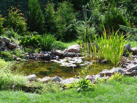 waterleiding: kleine tuin vijver