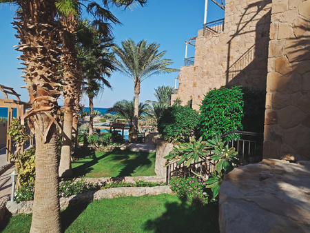 Beautiful green garden with palm trees and curly bushes In Hurghada city, Egypt