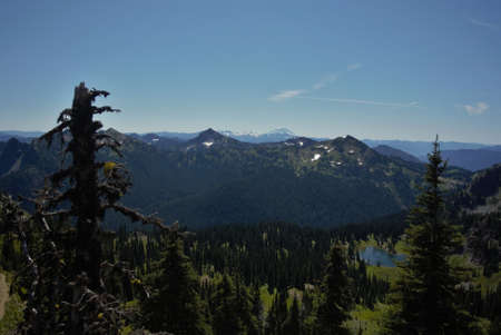 pct: vast valley of trees with clear blue sky