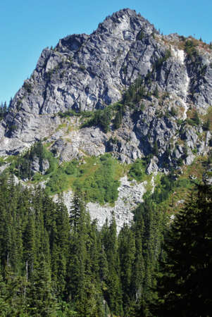 Peak of a mountain with valley of trees