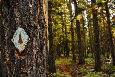pacific crest trail: pacific crest national scenic trail sign Stock Photo
