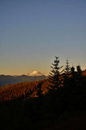 pct: snow capped mountain with pine tree silhouettes