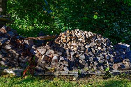 Firewood, dry and ready for winter