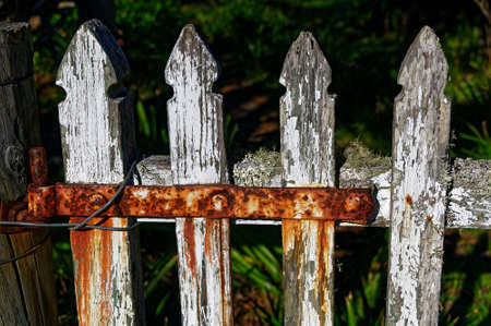 Paint wearing off a white picket fence with a reddish, rusty hinge