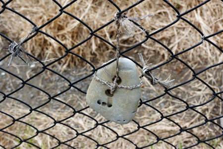 A hagstone hanging on a wire fence