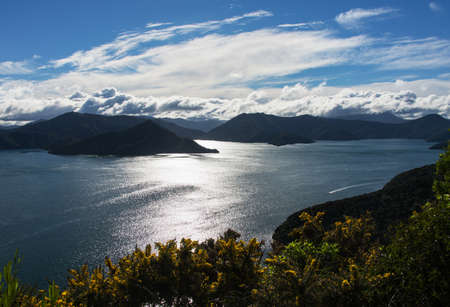 A view out over the Marlborough Sounds, New Zealand 版權商用圖片
