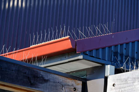 The wired bird protection is seen against the dark blue roof, the wires prevent the birds from roosting without hurting them