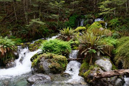 Multiple waterfalls cascade through green mossy rocks.