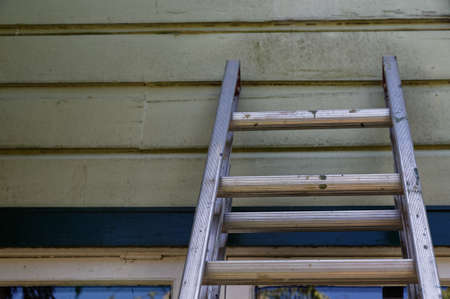 A wooden house, painted green, has a ladder leaning against it