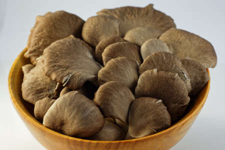 Oyster mushrooms are sitting in a wooden bowl