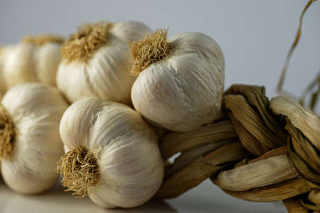 The creamy white skin of the garlic bulbs in contrast to their dried stems which have been plaited