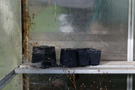 Plastic plant pots sit in a green house waiting for a spring clean to be replanted 版權商用圖片 - 145938547