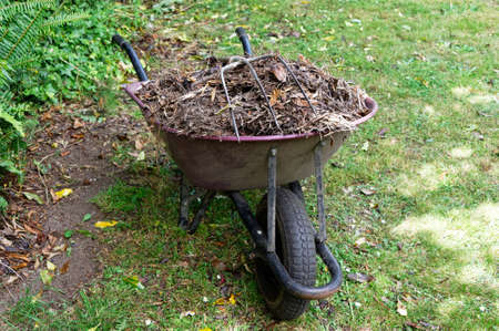 A wheelbarrow full of compost is waiting on the green lawn Reklamní fotografie