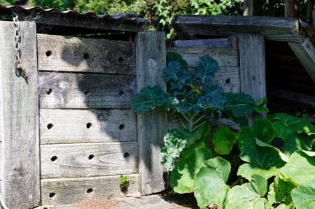 A wooden compost bin with corrugated iron lid and aeration holes drilled in the side