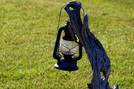 An old lantern hangs off a tree stump to show people the way home