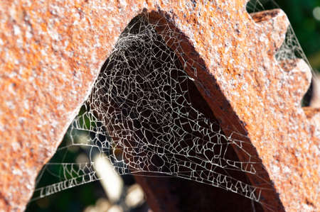 A spider has made its home in a rusty wheel, its web is lit by the sun 版權商用圖片