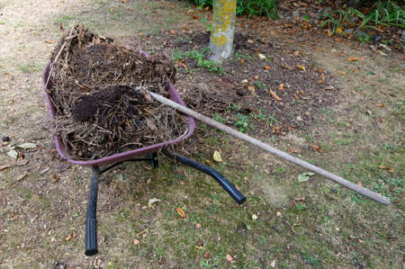 Organic compost is about to be forked around a tree to help replenish the soil and aid moisture retention