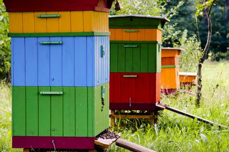 ミツバチの巣箱 - ポーランド 写真素材 - 53921657