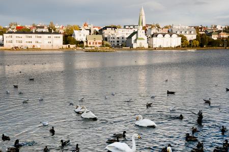 アイスランド - レイキャビク 写真素材