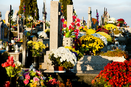all saints day: Flowered Graves on All Saints Day - Poland