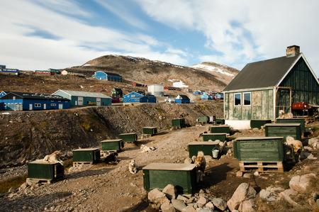 esquimales: Los perros de trineo - Ittoqqortoormiit Pueblo - Groenlandia