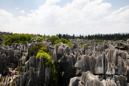 kunming: Shilin Stone Forest - Kunming - China
