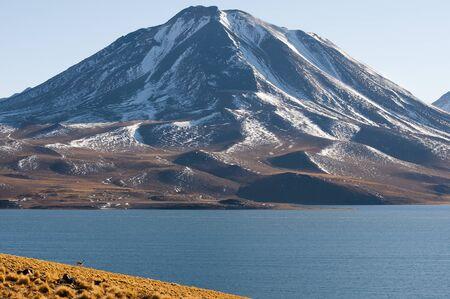 lagoon: Miscanti Lagoon - Chile
