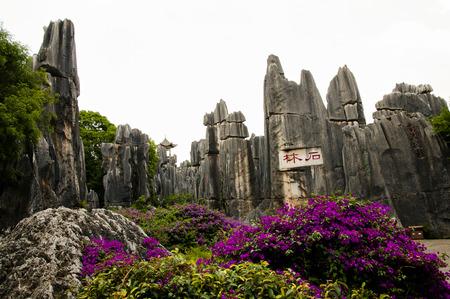yunnan: Shilin Stone Forest - Kunming - China