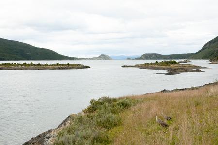 fuego: Bahia Lapataia - Tierra Del Fuego - Argentina
