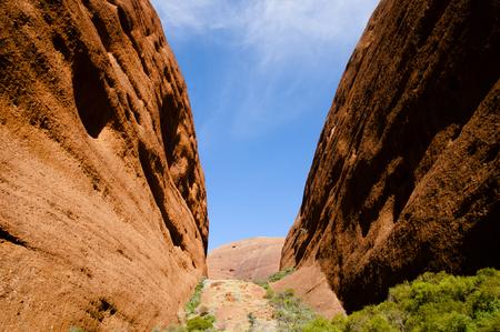 olgas: The Olgas - Northern Territory - Australia