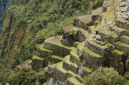machu picchu: Machu Picchu Steep Terraces - Peru