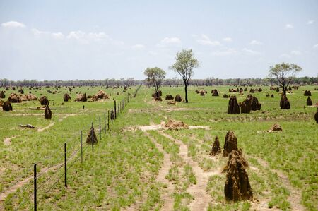 mounds: Termite Mounds - Australia Stock Photo