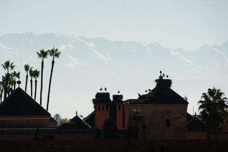 cigue�a: Cig�e�as en el nido de la silueta - Marrakech - Marruecos Foto de archivo