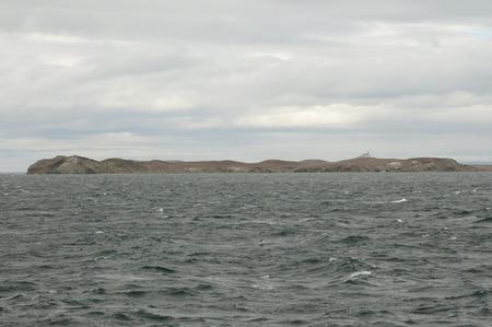 magdalena: Magdalena Island - Chile Stock Photo