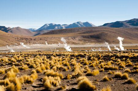 el: El Tatio Geyser Field - Chile Stock Photo