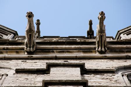 gargoyles: Gargoyles on St Michael Church - Ghent - Belgium