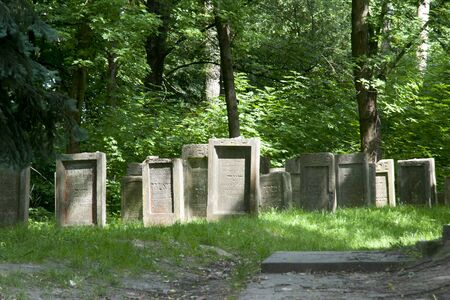 hasidism: Jewish Cemetary - Lezajsk - Poland Editorial