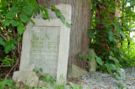 jewish: Jewish Cemetary Tombstone - Lezajsk - Poland